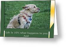 Life Is A Warm Summers Breeze Greeting Card