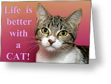 Life Is Better With A Cat Greeting Card