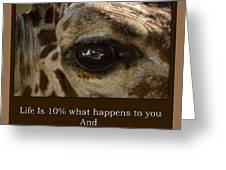 Life Is Going Eye To Eye Sometimes Greeting Card