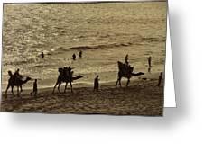 Life Near The Arabian Sea Greeting Card