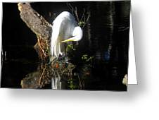 Life On The River Greeting Card