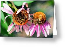 Life Preservation Greeting Card