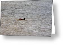 Lifeguard Training Greeting Card