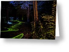 Lighit Painted Forest Scene Greeting Card