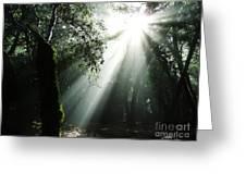 Light Angel Greeting Card