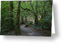 Light At The End Of The Path Greeting Card