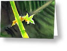Light Branch Greeting Card
