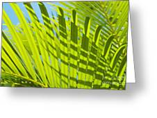 Light Green Palm Leaves Greeting Card