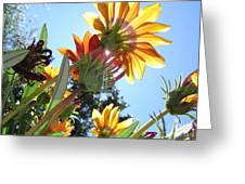 Light Life Beauty Death Greeting Card