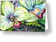 Light Of Orchids Greeting Card