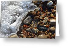 Light On Rocks And Ice  Greeting Card