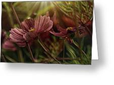 Light On The Cosmos Greeting Card