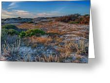 Light On The Dunes Greeting Card
