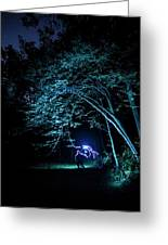 Light Painted Arched Tree  Greeting Card