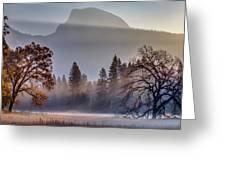 Light Rays In Yosemite Ground Fog Greeting Card