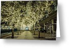 Light Scene Greeting Card