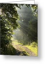 Light Unto My Path Greeting Card