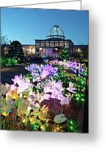 Lighted Flowers Greeting Card