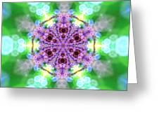 Lightmandala 6 Star 3 Greeting Card
