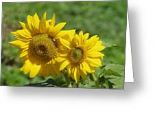 Like Two Smiles In Bloom Greeting Card