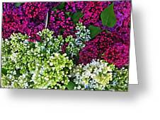 Lilac Bouquet Greeting Card