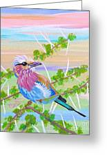 Lilac Breasted Roller In Thorn Tree Greeting Card