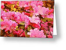 Lilac Candy Greeting Card
