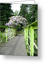 Lilac Colour  Crossing Greeting Card