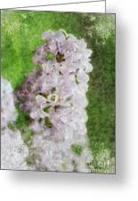 Lilac Dreams - Digital Watercolor Greeting Card