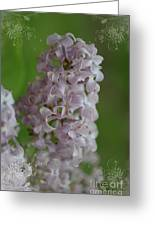 Lilac Dreams With Corner Decorations Greeting Card