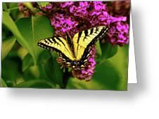 Lilac Landing Wall Art Greeting Card