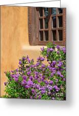 Lilacs And Adobe Greeting Card
