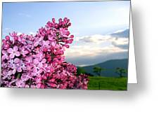 Lilacs And Green Pastures Greeting Card