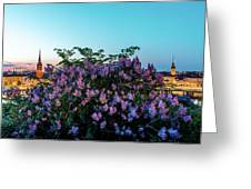 Lilacs And Sunset To Blue Hour Transition Over Gamla Stan In Stockholm Greeting Card