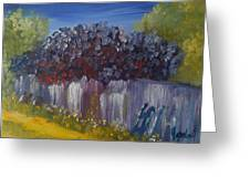 Lilacs On A Fence  Greeting Card