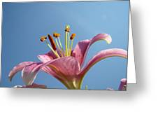 Lilies Art Prints Pink Lily Flower Giclee Art Prints Baslee Troutman Greeting Card