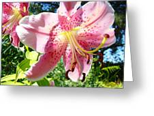 Lilies Art Prints Pink Lily Flowers 2 Giclee Prints Baslee Troutman Greeting Card