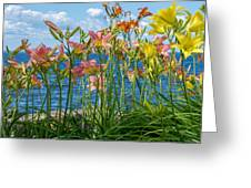 Lilies At The Waterfront Greeting Card