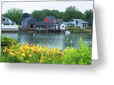 Lilies By The Bay, Cape Porpoise Me Greeting Card