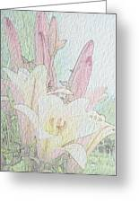 Lilies. Flowers And Buds. Greeting Card