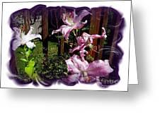 Lilies In Bloom Greeting Card