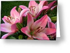 Lilies In Company Greeting Card