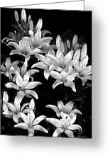 Lilies In My Garden Greeting Card