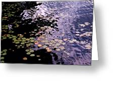 Lilies In The Water Greeting Card