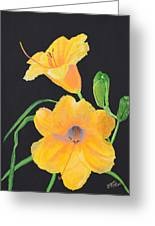 Lilies Of September Greeting Card