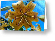 Lilium Yellow Greeting Card