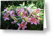 Lillies Galore Greeting Card