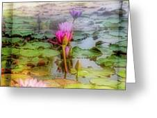 Lillie's Of Capistrano Greeting Card by Michael Hope