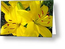Lilly Flowers Art Prints Yellow Lilies Floral Baslee Troutman Greeting Card