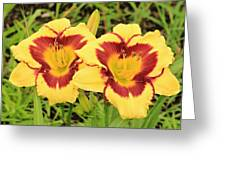 Lilly1 Greeting Card